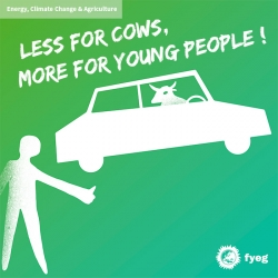 24-less-for-cows-more-for-young-people